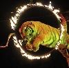 Цирки в Березовом